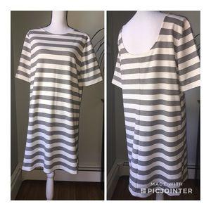Gap size XL ivory white black stripe Shift dress